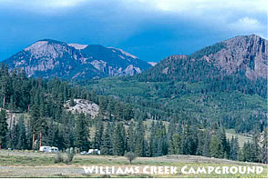 Williams Creek Campground